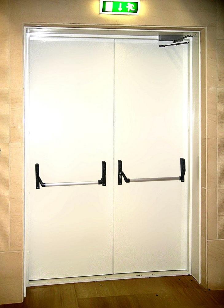 двери двустворчатые металлические для больниц цена