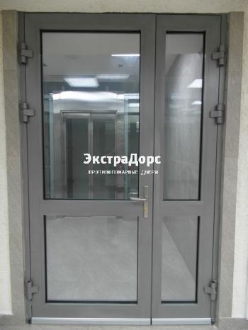 двери противопожарные металлические остекленные входные